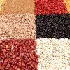 beans nd Lentils