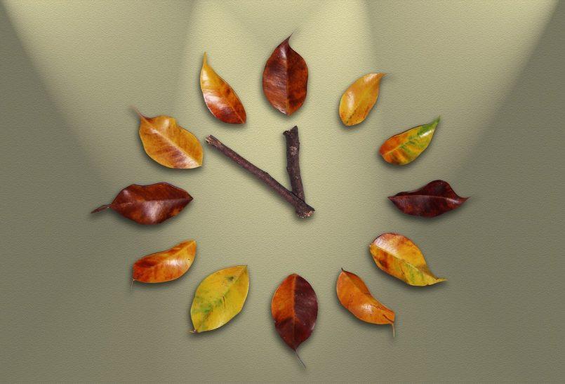 समय का सटीक उपयोग लाएगा समृद्धी, जानिए जैविक घड़ी पर आधारित शरीर की दिनचर्या